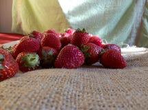 Nya jordgubbar på ett tyg Arkivfoton