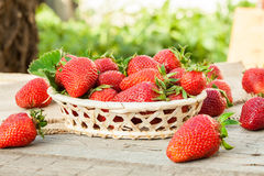 Nya jordgubbar på träbakgrund Royaltyfri Foto