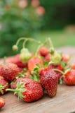Nya jordgubbar på trätabellen Fotografering för Bildbyråer