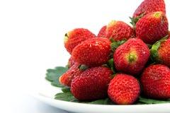 Nya jordgubbar på vit pläterar Royaltyfri Bild