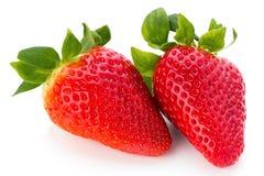 Nya jordgubbar stänger sig upp på vit bakgrund royaltyfri foto