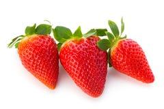 Nya jordgubbar stänger sig upp på vit bakgrund royaltyfria foton