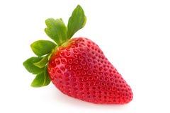 Nya jordgubbar stänger sig upp på vit bakgrund arkivfoton