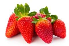Nya jordgubbar stänger sig upp på vit bakgrund royaltyfri bild