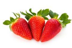 Nya jordgubbar stänger sig upp på vit bakgrund fotografering för bildbyråer