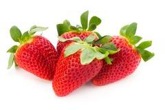 Nya jordgubbar st?nger sig upp p? vit bakgrund arkivfoto