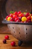 Nya körsbärsröda plommoner Royaltyfria Bilder