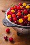 Nya körsbärsröda plommoner Arkivbild