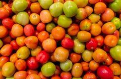 Nya körsbärsröda tomater för bakgrund, tapet Royaltyfri Foto