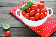 Nya körsbärsröda tomater i en stor bunke Fotografering för Bildbyråer
