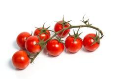 Körsbärsröda tomater på vine. Arkivfoton