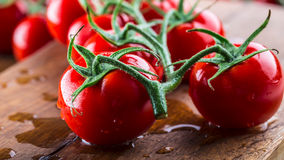 Nya körsbärsröda tomater tvättade rent vatten Klipp nya tomater Arkivbild