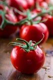 Nya körsbärsröda tomater tvättade rent vatten Klipp nya tomater Royaltyfri Bild