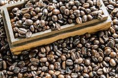 Nya kaffebönor, selektiv fokus Arkivbild