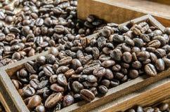 Nya kaffebönor, selektiv fokus Royaltyfri Fotografi
