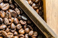 Nya kaffebönor, selektiv fokus Arkivfoton