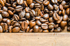 Nya kaffebönor, selektiv fokus Royaltyfria Bilder