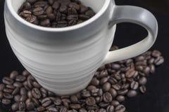 Nya kaffebönor som är nära upp med en råna Royaltyfri Foto