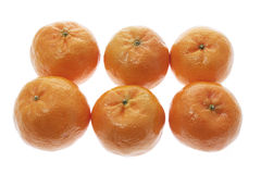 nya kinesiska mandarins Arkivbilder