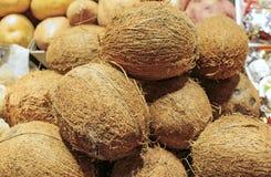 Nya kokosnötter i en marknad av Barcelona Fotografering för Bildbyråer