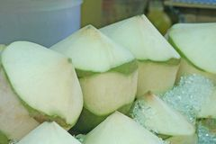 Nya kokosnötter på ishinken royaltyfri fotografi