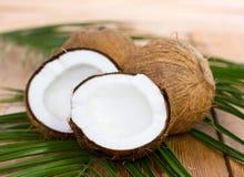 Nya kokosnötter på tabellen fotografering för bildbyråer