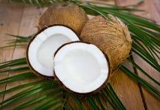 Nya kokosnötter på tabellen royaltyfria foton