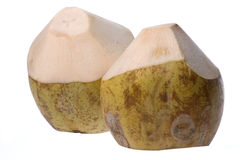 Nya kokosnötter Arkivbilder