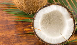 Nya kokosnötter i variosformer Arkivbild