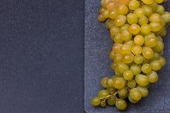 Nya läckra och sunda organiska harmonidruvor Royaltyfri Fotografi