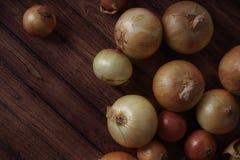 Nya lökkulor på träbakgrund Grönsaker för ett sunt bantar Kulalöken är rik i vitaminer, användbar vår Lökpeel arkivfoto