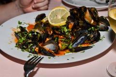 Nya lagade mat musslor Royaltyfri Fotografi