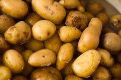 Nya lagade mat potatisar på en panna, typisk andean mat Arkivfoton
