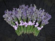 Nya lavendelgrupper på trämaterielet Royaltyfri Foto