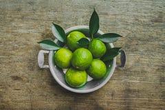 nya limefrukter Royaltyfria Foton