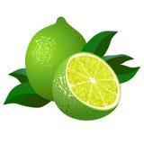 Nya limefrukter med lämnar Arkivbilder