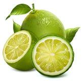Nya limefrukter med sidor Royaltyfri Foto