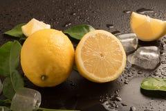 Nya limefrukter med sidor och iskuber Arkivfoto