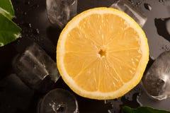 Nya limefrukter med sidor och iskuber på den våta svarta bakgrunden Royaltyfri Bild