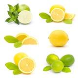 nya limefrukter och citroner - collage arkivbild