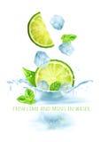 Nya limefrukter och mintkarameller i vatten Arkivbild