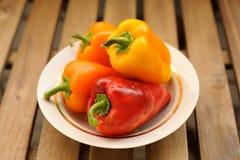 Nya ljusa kulöra spanska peppar i den vita plattan Arkivbilder