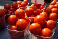 Nya ljusa röda tomater som säljer i askar med solljusreflexion på solskendag i lokal stadsmarknad Arkivbild