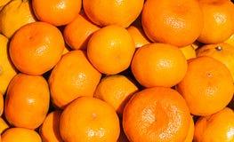 Nya mandarinapelsiner Arkivfoton