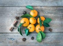 Nya mandarines med kanelbruna pinnar och anis Arkivbilder
