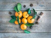 Nya mandarines med kanelbruna pinnar och anisstjärnor över en rou Arkivfoto