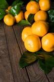 Nya mandarines med sidor Fotografering för Bildbyråer