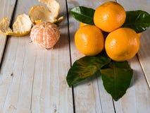 Nya mandarines på trätabellen Royaltyfria Foton