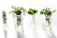 Nya medicinska örter i exponeringsglas på vit bakgrund Arkivbild