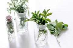 Nya medicinska örter i exponeringsglas på vit bakgrund Arkivfoton